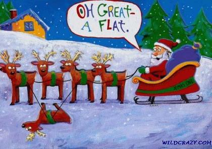 15 Funny Christmas and Holiday Cards Collection